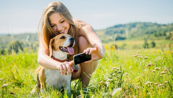 Dogalize Social Network For Dog-Lovers | The Newswatch